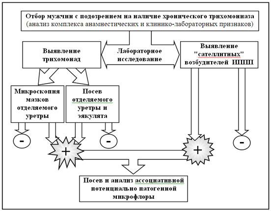 схемы этиотропного лечения